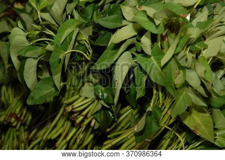 Water Spinach Kang Kong Green Vegetable Selling In Public Market