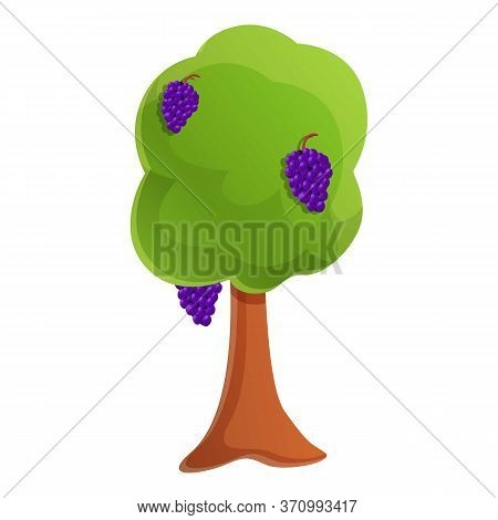Vineyard Icon. Cartoon Of Vineyard Vector Icon For Web Design Isolated On White Background