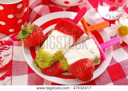 Homemade Fruit Ice Creams