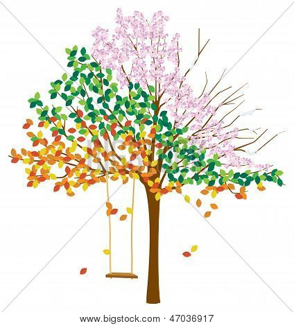 Tree with Multiple Seasons