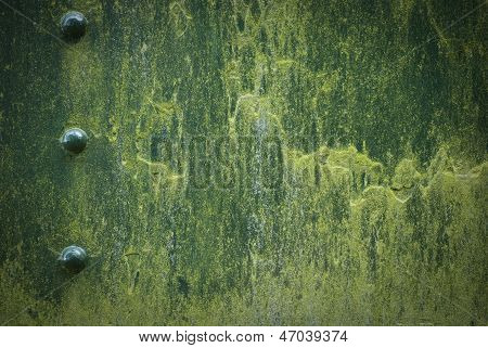 Green Metal Painted Background