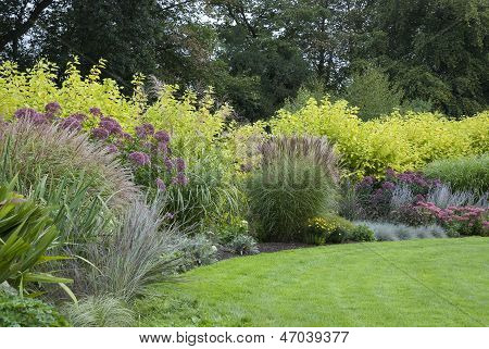 Lawn In English Blooming Garden