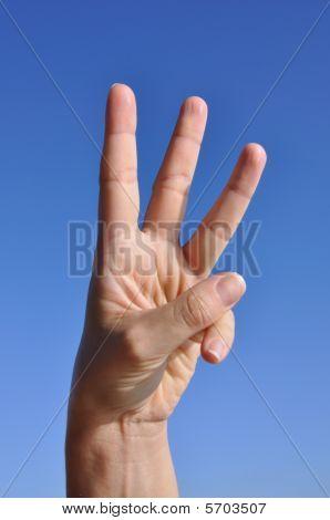 Woman Hand-three Fingers