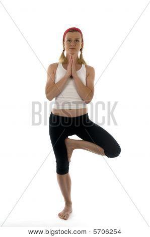Yoga Spine Twisting Vikram Pose Illustration Fitness Trainer Teacher