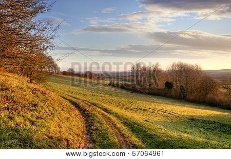 Morning Landscape, England