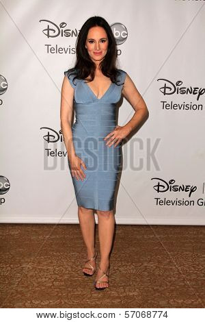 Madeleine Stowe at the Disney ABC Summer Press Tour, Beverly Hilton, Beverly Hills, CA. 08-07-11