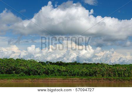 Peru Peruvian Amazonas landscape. The photo present reflections of Maranon river poster