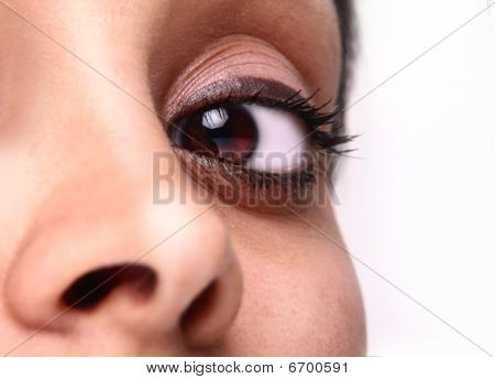 Beautiful Brown Eye