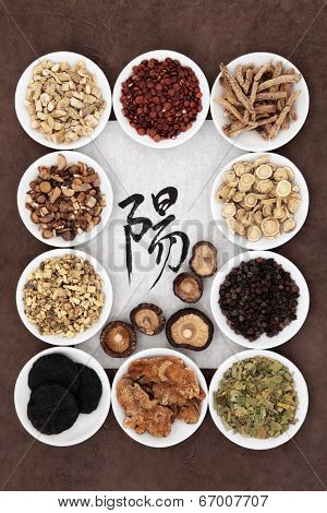 Chinese herbal medicine with calligraphy script on rice paper with yang herb selection. Translation reads as yang.