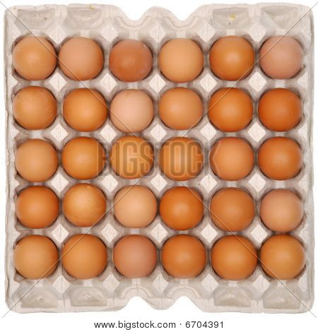 Eggs In Protective Packaging