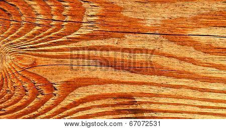 Piece Of Old Vein Wood