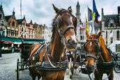 Horse-drawn carriages at the main square of Bruges Belgium poster
