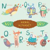 Cute animal alphabet. N o p q r s t letters. Nightingale owl penguin quail rabbit sheep turtle.Alphabet design in a colorful style. poster