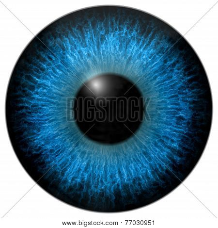 Eye iris generated hires texture or background poster
