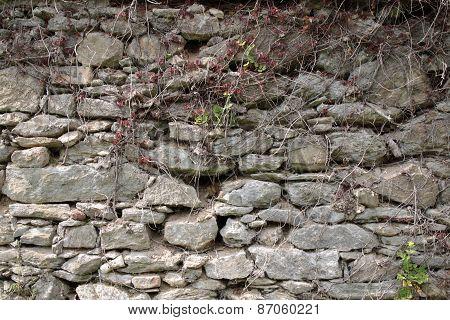 Old Shabby Wall