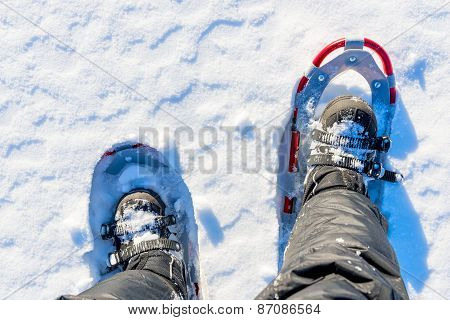 Men Legs Are Shod With Snowshoes On The Snow