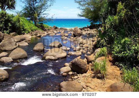 River Leading To Ocean In Kauai