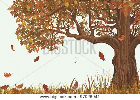 Autumn landscape with oak tree