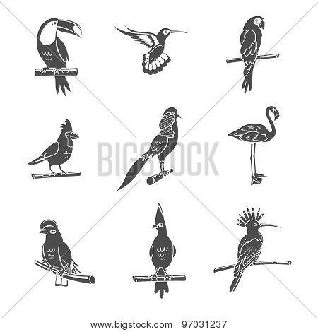 Bird Black Icons Set
