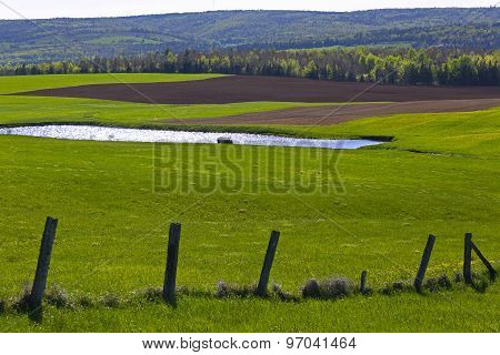 Countryside Pond Fence Field Cultivation