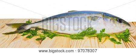 Whole Round Fish Yellowtail On A Wooden Surface