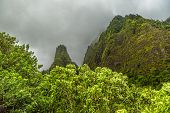 A view of the Iao Needle from within Iao Valley State Park on Maui Hawaii poster