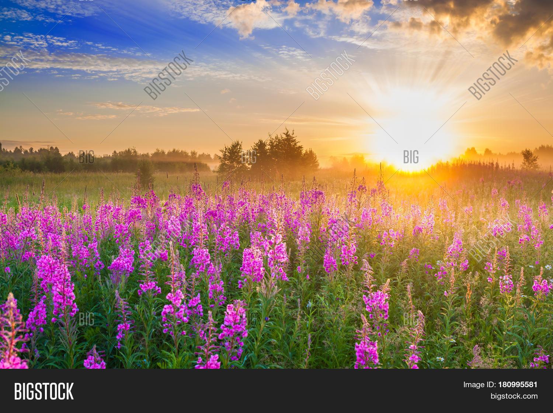 Beautiful Rural Image Photo Free Trial Bigstock