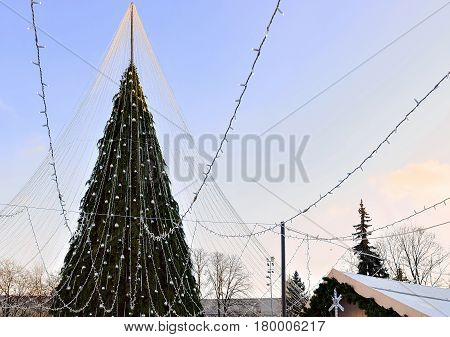 Christmas Tree With Decoration Installed In Vilnius At Sunset