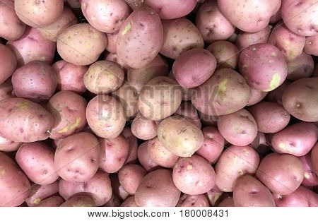 Several raw spuds make a Red Potatoes Background
