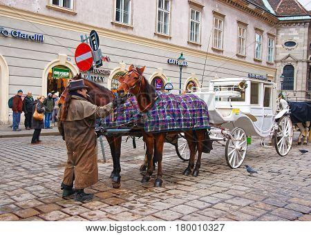 Horse Fiacre At Stephansplatz In Vienna City Center