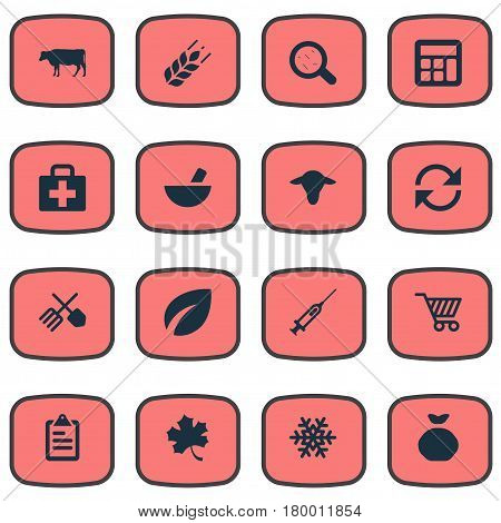 Vector Illustration Set Of Simple Agricultural Icons. Elements Buffalo, Cart, Syringe And Other Synonyms Grain, Virus And Data.
