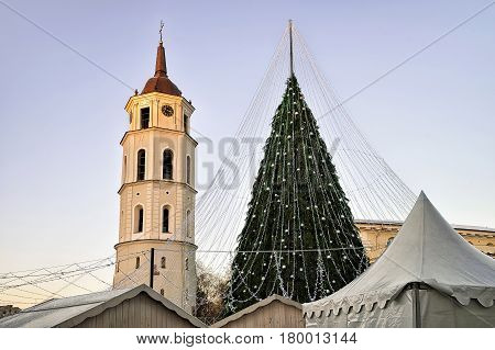 Christmas Tree And Cathedral Bell Tower Vilnius Lithuania Before Xmas