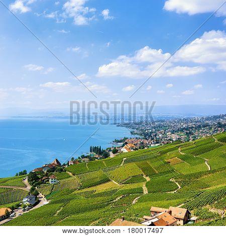 Swiss Chalets Near Lavaux Vineyard Terraces Hiking Trail Of Switzerland