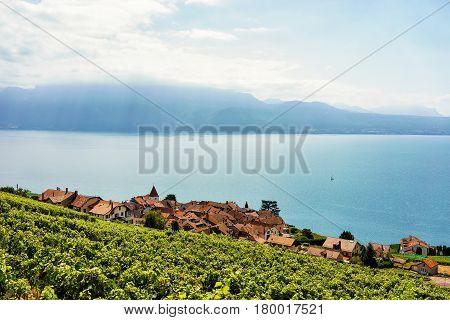 Swiss Village At Lavaux Vineyard Terrace Hiking Trail Of Switzerland