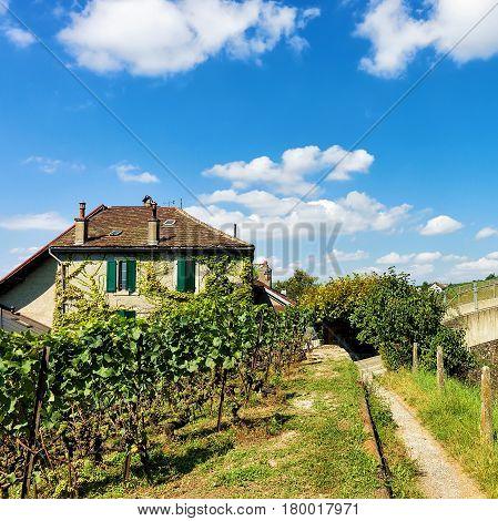 Chalet In Lavaux Vineyard Terraces Hiking Trail Lavaux Oron