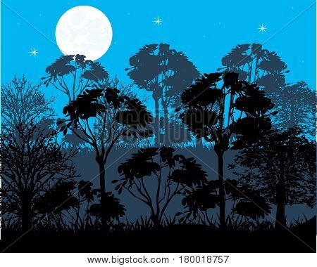 Moon night in wood and silhouettes tree