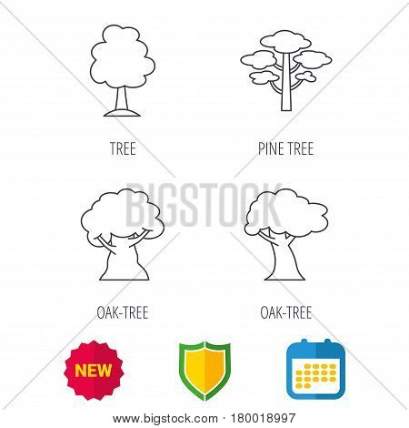 Pine tree, oak-tree icons. Forest trees linear sign. Shield protection, calendar and new tag web icons. Vector
