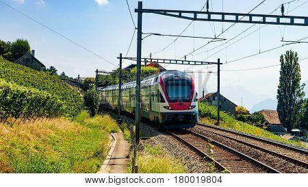 Running Train In Vineyard Terrace Of Lavaux Switzerland
