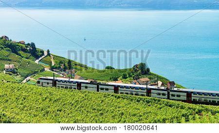 Train At Vineyard Terrace Of Lavaux Near Lake Geneva Alps