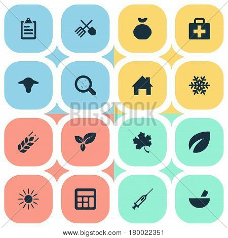 Vector Illustration Set Of Simple Agricultural Icons. Elements Snowflake, Wheat, Virus And Other Synonyms List, Information And House.
