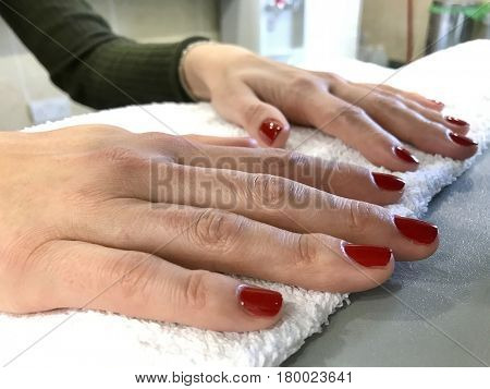 Manicure female hands red painted varnish salon spa treatment