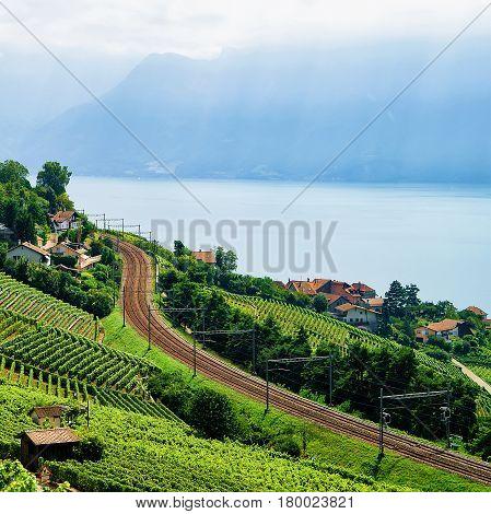 Railroad In Lavaux Vineyard Terraces Lake Geneva In Switzerland