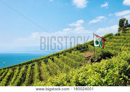 Shelter House With Flag At Vineyard Terraces Lavaux In Switzerland