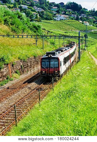 Swiss Running Train At Vineyard Terrace Of Lavaux In Switzerland