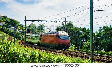 Train And Railroad Lavaux Vineyard Terrace