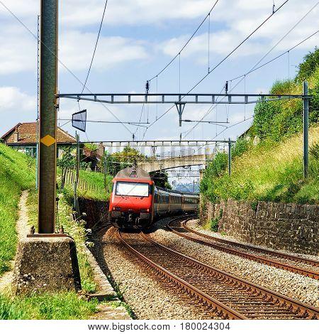 Train And Railroad Lavaux Vineyard Terraces