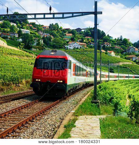 Train And Railroad In Lavaux Vineyard Terraces
