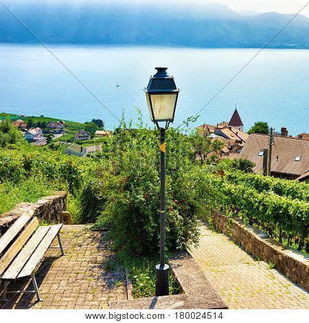 Wooden Bench And Lantern At Lavaux Vineyard Terraces Trail Switzerland