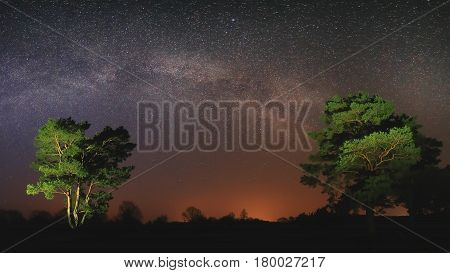 Lyrical Night Scene With Bright Milky Way