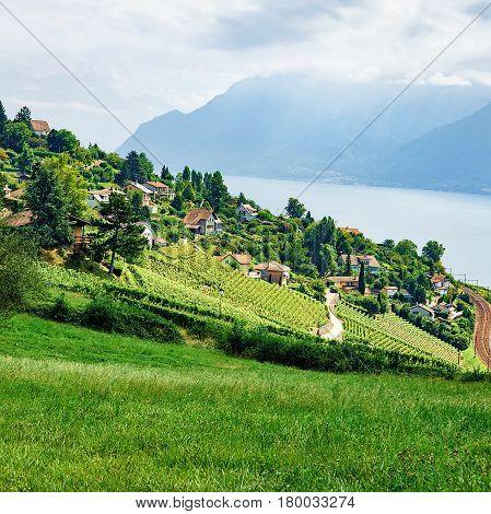 Countryside At Lavaux Vineyard Terrace Hiking Trail Switzerland